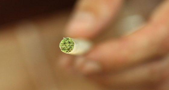 D'Amsterdam à Seattle, les villes Cannabis-Friendly !